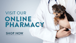 Harlingen Veterinary Clinic Online Pharmacy